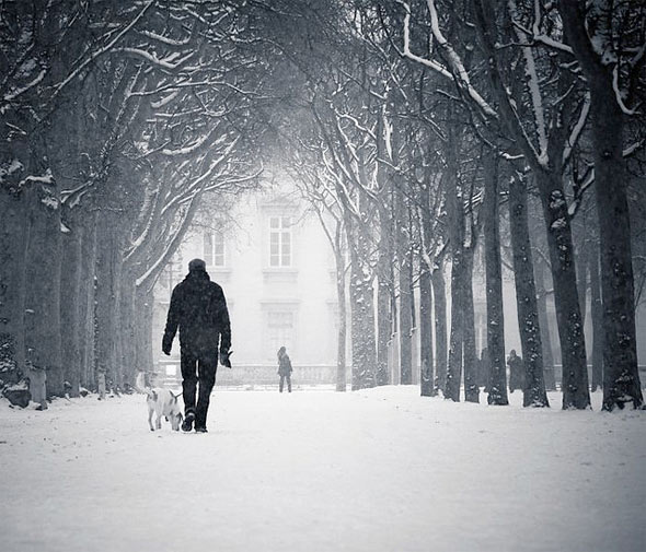 winter_photography_17