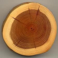 woodrings