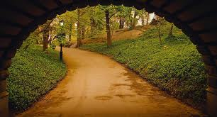 path with tunnel